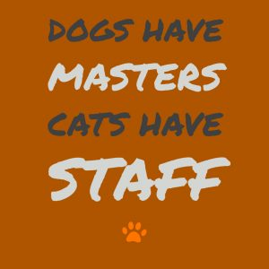 dogs have masters cats have staff